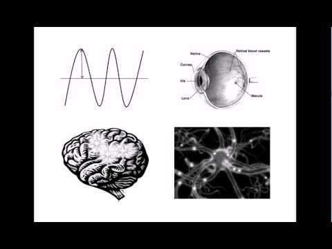 Non-Physical Properties of the Mind? Qualia #1: Introduction