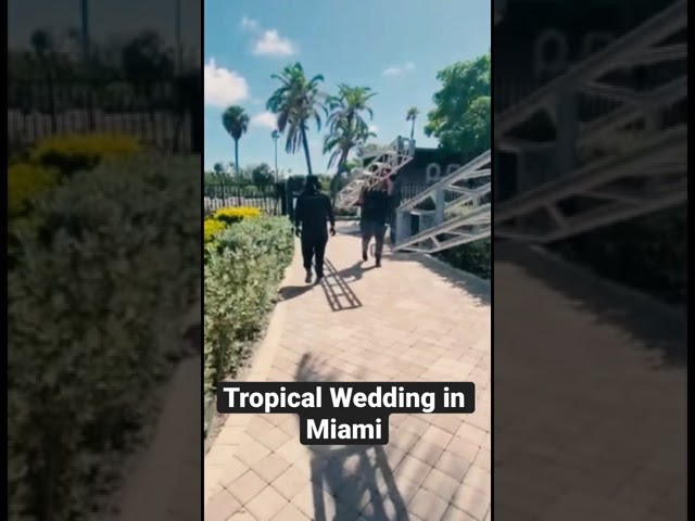 Tropical Vibes Wedding