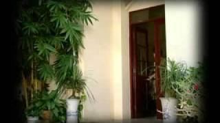 Vi Ta Ma Em Lia Xa - Hoang Phi Khanh