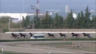 Vidéo de la course PMU PRIX PEDRO CABRER
