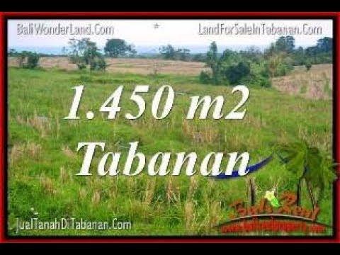 Bali LAND for SALE IN Tabanan Selemadeg TJTB343