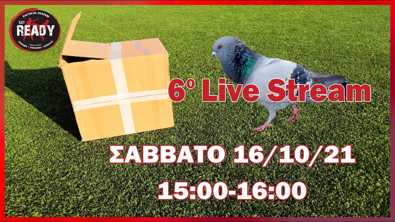 Live Stream 6 ΠΑΓΙΔΕΣ ΓΙΑ ΕΠΙΒΙΩΣΗ