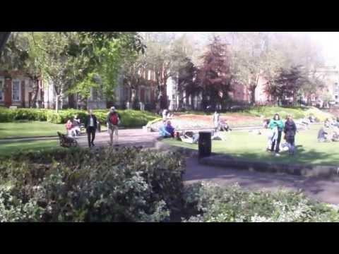 St Patricks Park - Dublin