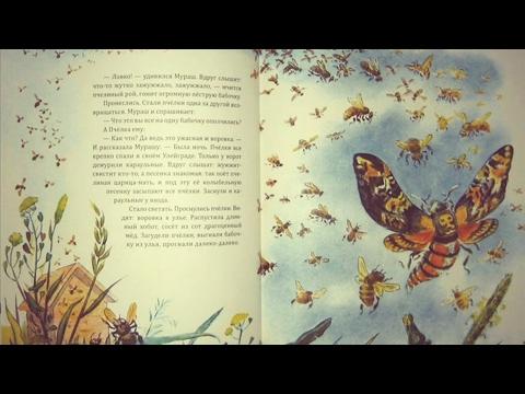 Сказки о животных, лесные истории #1 аудиокнига с картинками
