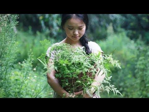 生活|90後美女隱居森林,造了個300㎡的花房……
