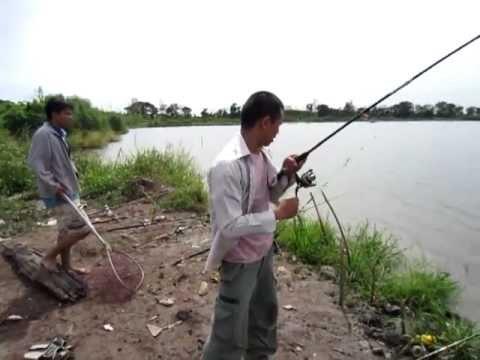 ตกปลา บ่อธรรมชาติ