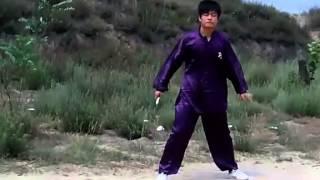 Nhị khúc China - Lại Xuân Huy sưu tầm Clip 3
