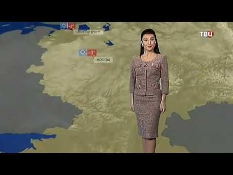 Погода сегодня, завтра, видео прогноз погоды на 3 дня 13.11.2016