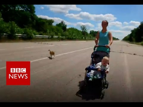 On the front line of Ukraine's ceasefire - BBC News