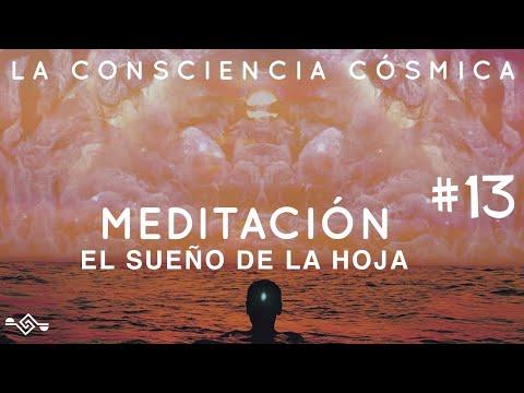#13-meditación:-el-sueño-de-la-hoja