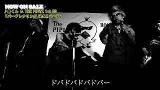 ♪鳥くん&The PIPITZ 'とりース' 1st CD「バードレナリンがどばどバード」 告知用MV(short virsion)EX:ソノライフ、永井真人