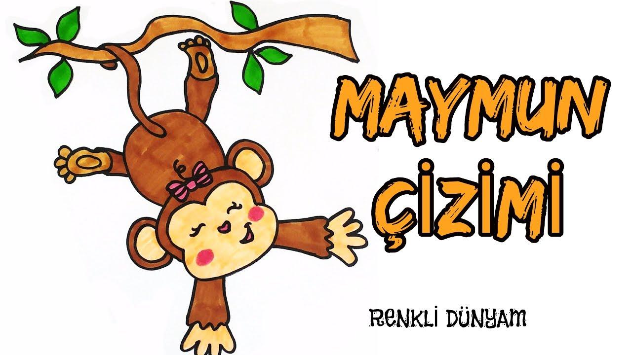 Maymun Nasil Cizilir Maymun Cizimi How To Draw A Monkey Renkli
