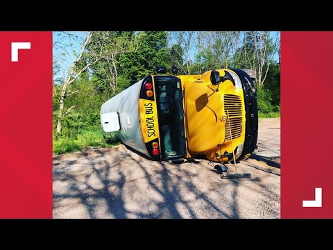 School bus involved in early morning accident, no injuries reported