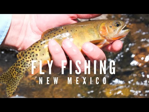 Fly Fishing - Jemez, New Mexico