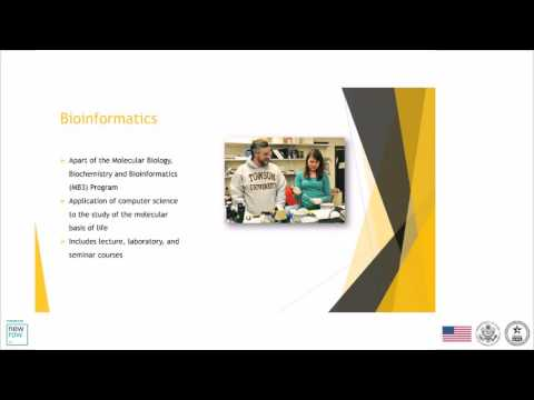Programs in Cyber Security, Marketing Intelligence, Computer Science by Towson University