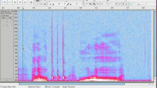 How to View tнe Spectrum in Audacity