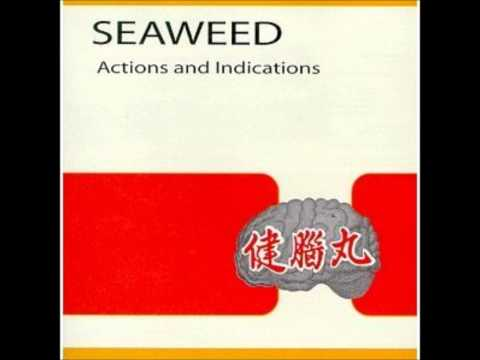 Seaweed - Antilyrical