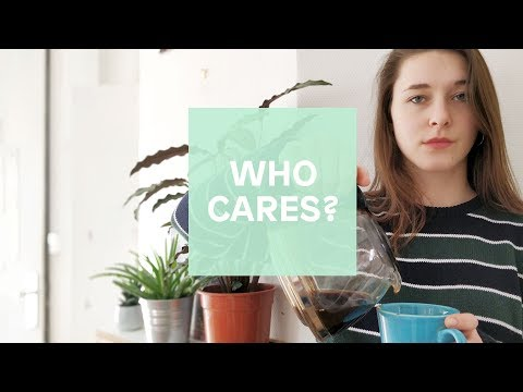 Who cares? - Is Europe addicted to unpaid internships?