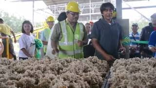 P40.7-M rubber facility to boost farmers' income