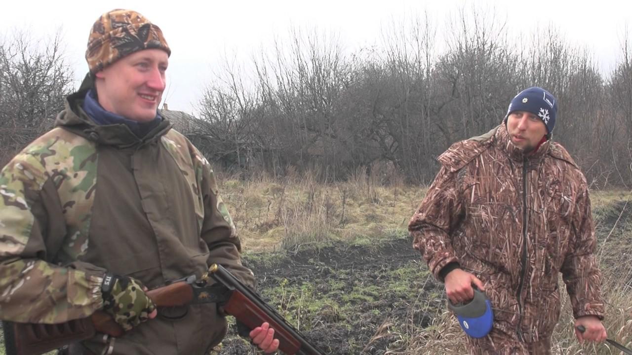 фазан фото охотничий