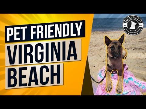 Pet Friendly Virginia Beach Family Road Trip
