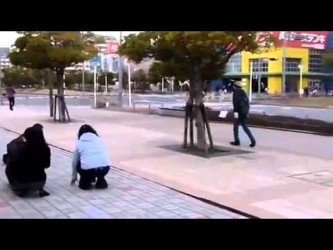 Интересное видео Землетрясение
