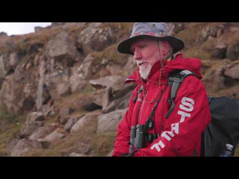EXPLORING SVALBARD - searching for polar bears in the Arctic
