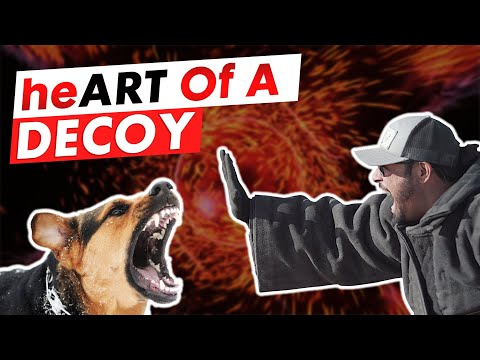 heART OF A DECOY EP. 2