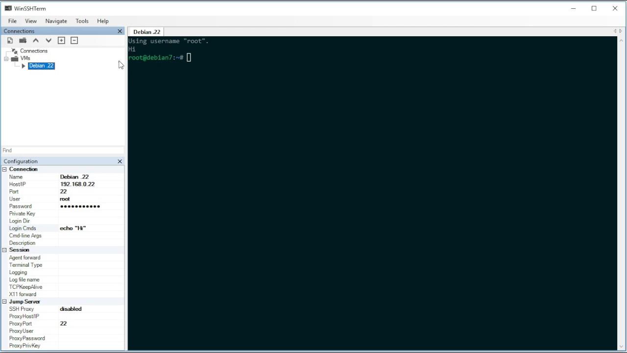 WinSSHTerm - Automatically run commands after login