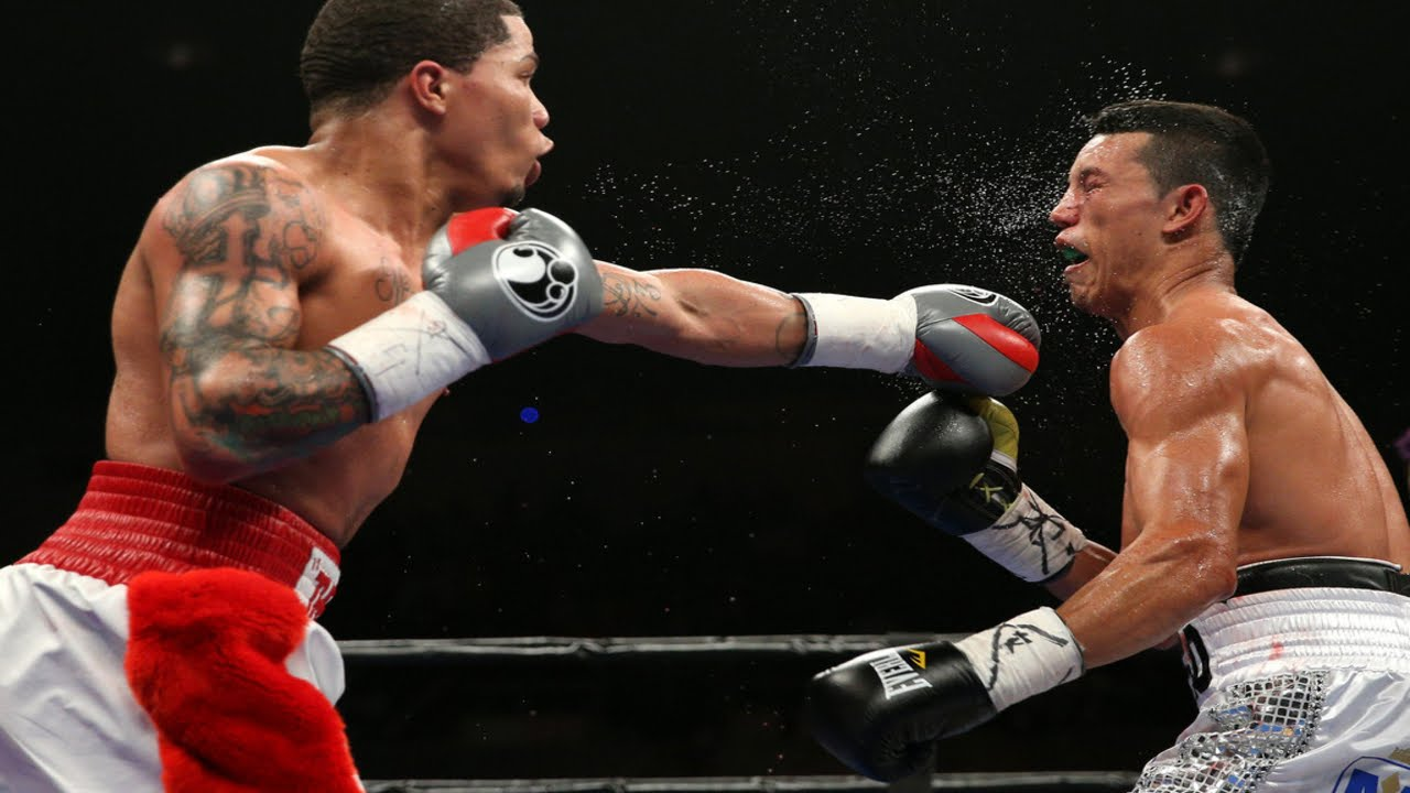 Gervonta Davis - Highlights / Knockouts