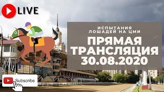 30.08.2020. Прямая трансляция с ЦМИ.