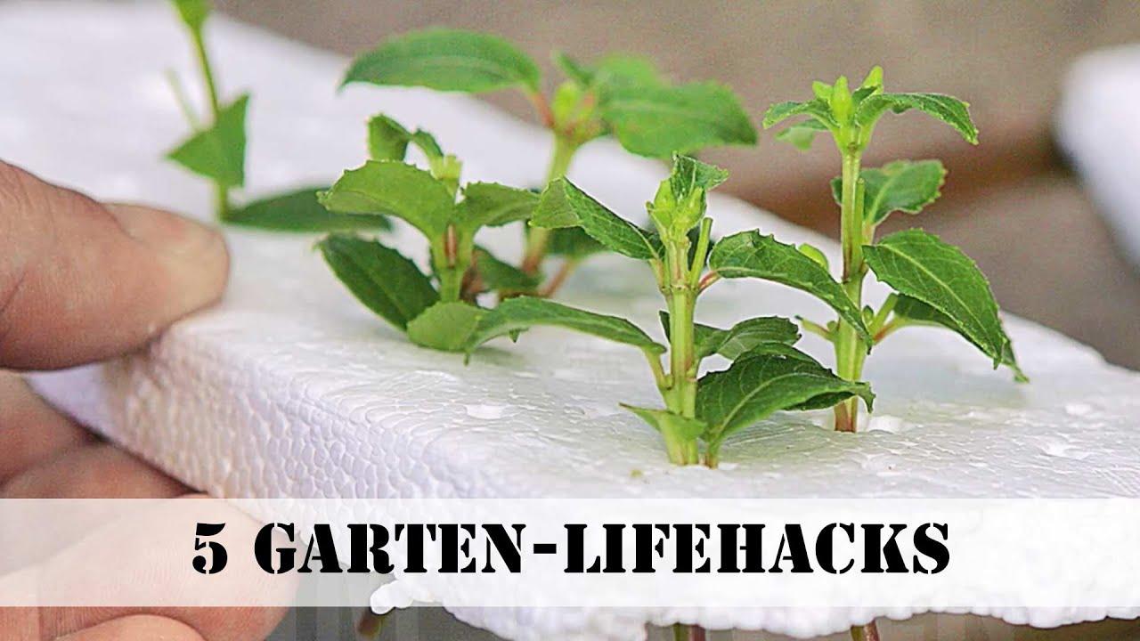 5 GartenLifehacks