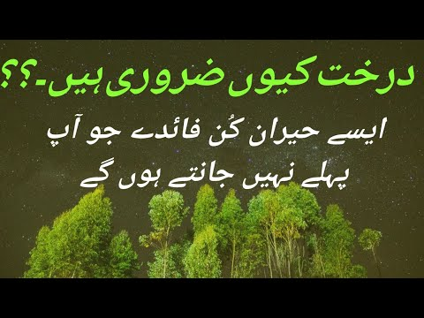 Why Trees are Important ? | Benefits of Trees | درخت کیوں ضروری ہیں۔درختوں  کے فوائد