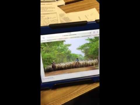 Group work on the Amazon Rainforest