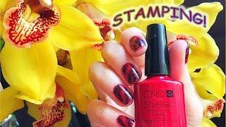 Стемпинг на Гель Лак CND Shellac с пластиной BC-09 c AliExpress (Stamping nail art +Shellac CND).(, 2016-06-20T06:30:00.000Z)