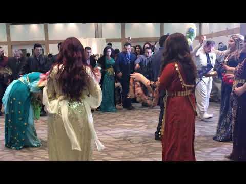 Kurdish Wedding (Dawata Kurdi)