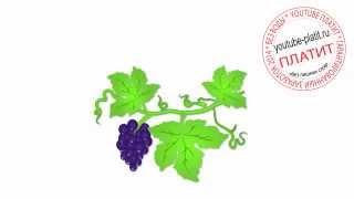 Как нарисовать виноград(Как нарисовать картинку поэтапно простым карандашом за короткий промежуток времени. Видео рассказывает..., 2014-06-28T16:56:02.000Z)