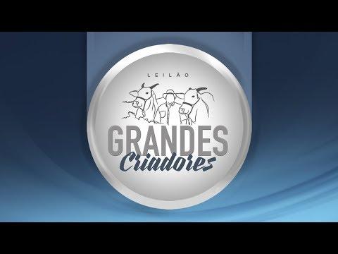 Lote 19   Diamantina 36 DC TE   GCID 2281   Alhada FIV Brumado   POIT 5 Copy