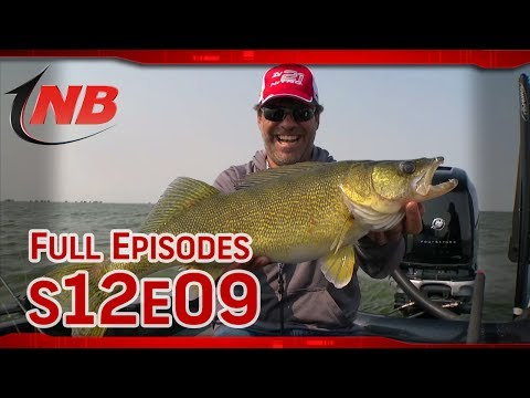 Slow Drift Shivering: Last Mountain Lake Walleyes