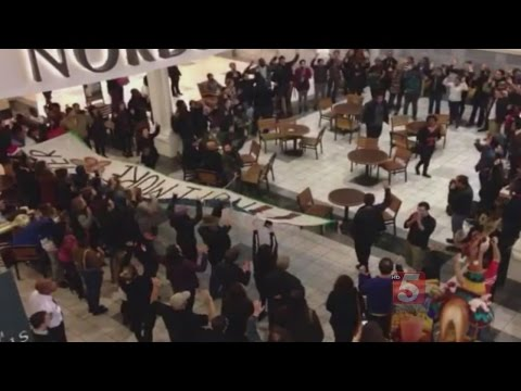 Protest Group Marches Through Mall At Green Hills