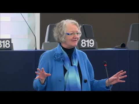 Gesine Meissner 05 Feb 2018 plenary speech on clean energy innovation