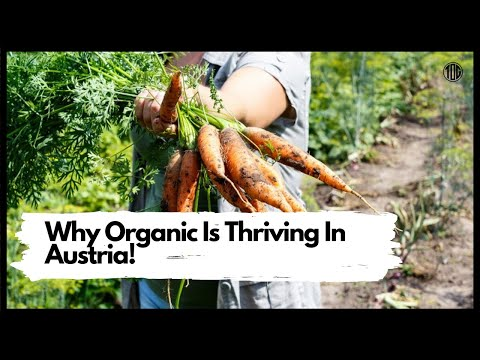 Why Is Organic Thriving In Austria?