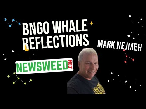 BNGO Whale Reflections