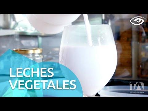 Leches vegetales - Día a Día - Teleamazonas