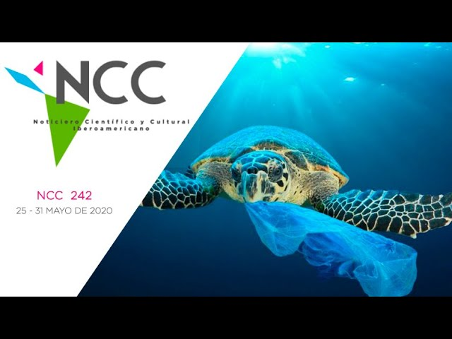 Noticiero Científico y Cultural Iberoamericano, emisión 242. 01 al 07 de Junio 2020