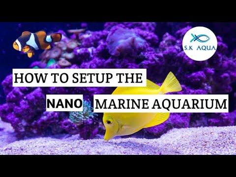 How To Setup The Nano  Marine Aquarium? [TAMIL]