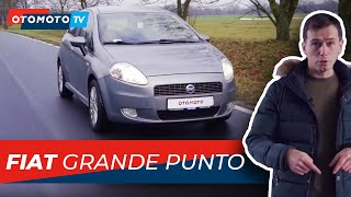Fiat Punto 2012 Videos