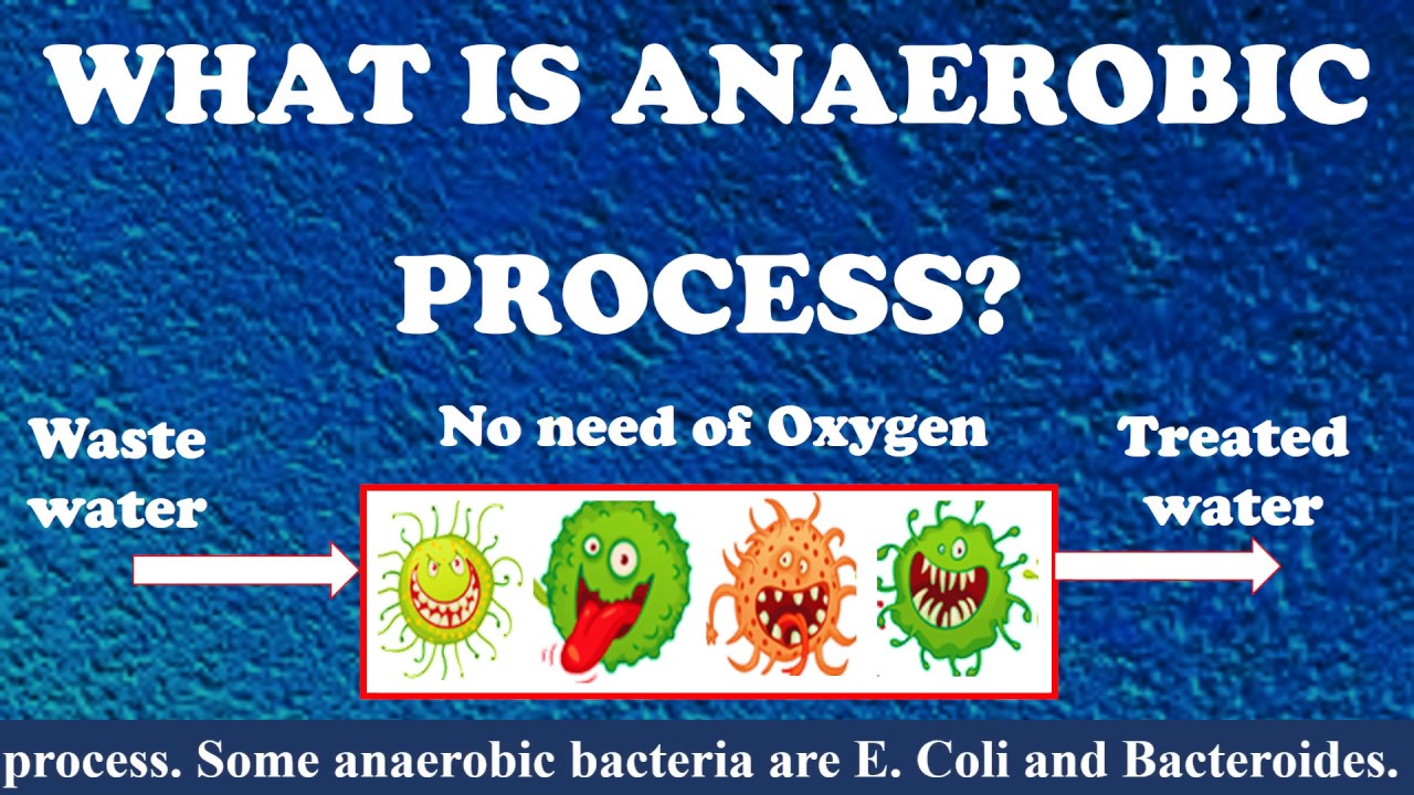 What is Anaerobic process? | Types of Anaerobic process