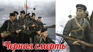 Почему Вермахту стало страшно? Новороссийская операция 1943г.  военные истории