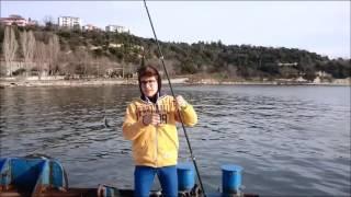 Darıca Kıyıdan İstavrit Avımız 03.02.2016